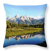 Mirrored Beauty Throw Pillow