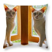 Mirrored Cats Throw Pillow