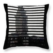 Mirrored Image Throw Pillow