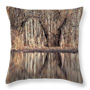Mirrored Opening Throw Pillow