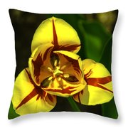 Mirrored Tulip Time Throw Pillow