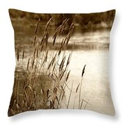 Mirroring Nature Throw Pillow