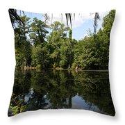 Mirrow Lake - Magnolia Gardens Throw Pillow