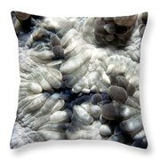 Miscellaneous 2 Throw Pillow