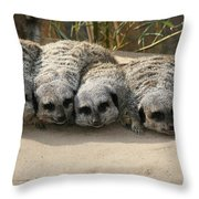 Mischievous Meerkats Throw Pillow