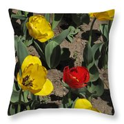Misplaced Tulip   #0934 Throw Pillow