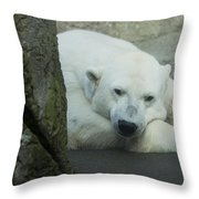 Missing The North Throw Pillow