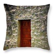 Mission Concepcion - Door Throw Pillow