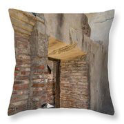 San Juan Capistrano Vi Throw Pillow