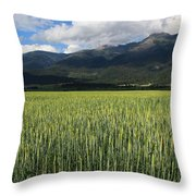 Mission Valley Wheat Throw Pillow