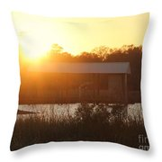 Mississippi Bayou 4 Throw Pillow