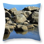 Mississippi Headwaters Throw Pillow