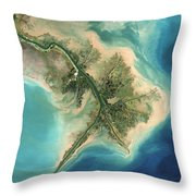 Mississippi River Delta, 2001 Throw Pillow