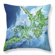 Mississippi River Delta Throw Pillow