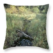 Mississippi River Headwaters Throw Pillow