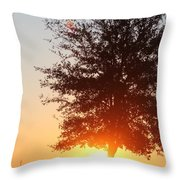 Mississippi Sunset  2 Throw Pillow