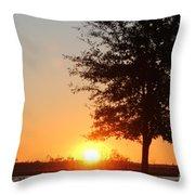Mississippi Sunset 4 Throw Pillow
