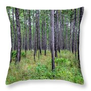 Mississippi Woods Throw Pillow