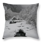 Mist Above The Creek Throw Pillow