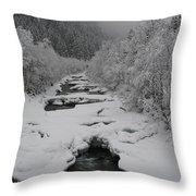 Mist Above The Creek Throw Pillow