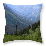 Mist In The Valley Throw Pillow