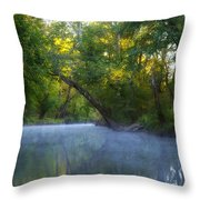Mist On The Wissahickon Throw Pillow