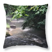 Mist Over The Water Throw Pillow