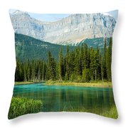 Mistaya River And Mountains Throw Pillow