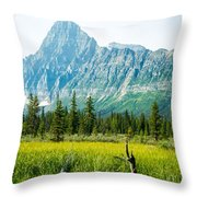 Mistaya River Valley And Mountain Range Throw Pillow