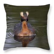 Mister Attitude Throw Pillow