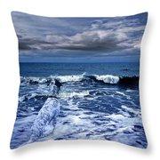 Mister Kallinski And The Sea Throw Pillow