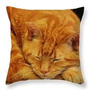 Mister Morris Throw Pillow
