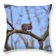 Mister Squirrel Throw Pillow
