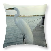 Mister When Are We Going To Have Catch Of The Day Throw Pillow