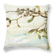 Mistletoe In The Snow Throw Pillow by English School