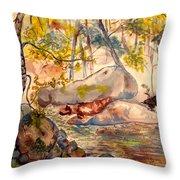 Misty Cascades Day Throw Pillow