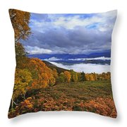 Misty Day In The Cairngorms II Throw Pillow