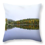Misty Day Reflection Throw Pillow