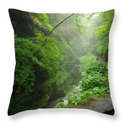 Misty Evening At Watkins Glen Throw Pillow