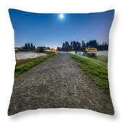 Misty Evening Walk Throw Pillow