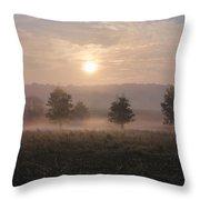 Misty Farm At Sunrise Throw Pillow