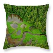 Misty Fjord Throw Pillow