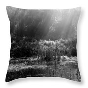 Misty Marsh - Black And White Throw Pillow