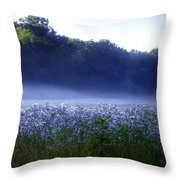 Misty Morning At Vally Forge Throw Pillow