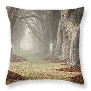 Misty Morning Avenue Of Oaks Throw Pillow