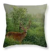Misty Morning Deer Throw Pillow