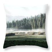 Misty Morning In Yosemite Throw Pillow