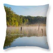 Misty Morning Lake Throw Pillow