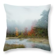Misty Morning Maine Throw Pillow