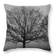 Misty Nature   Throw Pillow